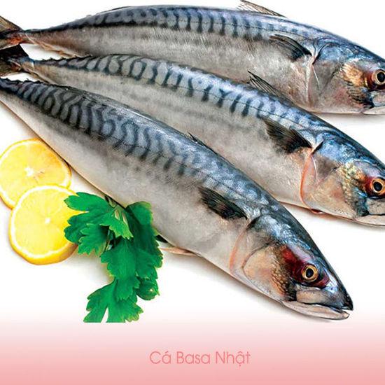 Ảnh của Cá Basa Nhật (kg)